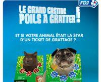 La FDJ a élu 10 animaux pour son jeu « Poils à gratter »