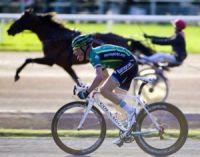 Comment acheter ou vendre un cheval de course ?