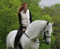 L'entrainement et l'alimentation d'un cheval de course