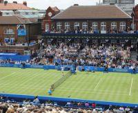 Gazon : sur quels joueurs de tennis parier cette année ?