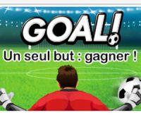 FDJ lance Maxi Goal pour préparer l'Euro 2016