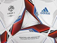 Ligue 1 version 2012-2013 : des paris sportifs compliqués ?