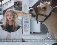 Nouvelles publicités de PartyPoker : une coupe bio ou 1 000 euros ?