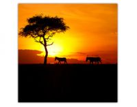Winamax double vos gains et vous envoie en Afrique du Sud
