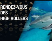 Qu'est-ce qu'un tournoi de poker « High Roller » ?