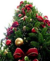 A Noël, les tombolas pour récolter de l'argent marchent toujours !